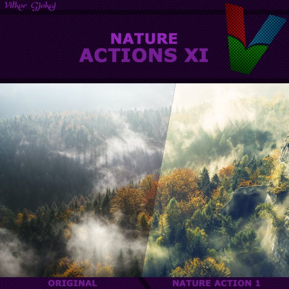 Nature Actions XI
