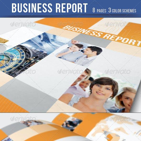 Business Report / Brochure