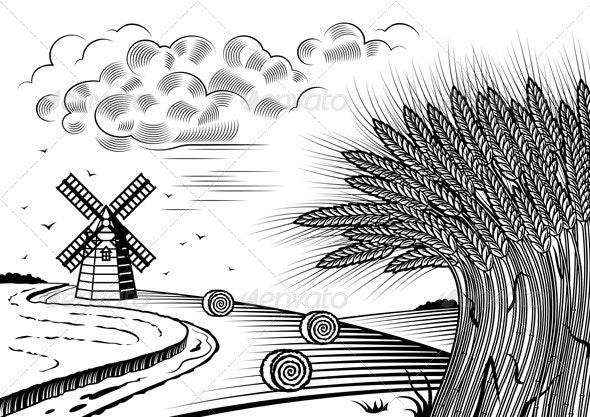 Wheat Fields Landscape Black And White - Landscapes Nature
