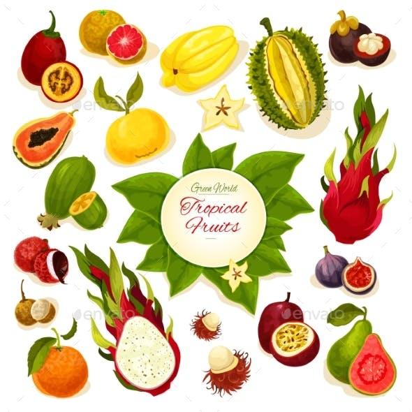 Tropical Fresh Fruits Vector Poster