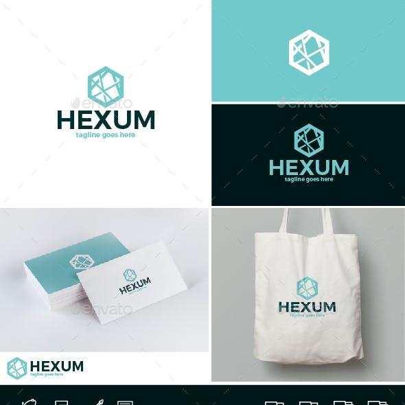 Hexum Logo