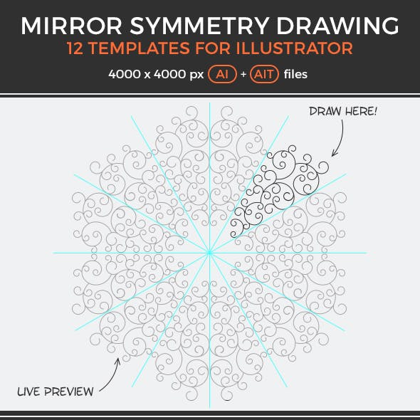 Mirror Symmetry Drawing