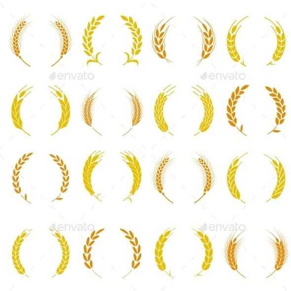 Wheat Ear Symbols
