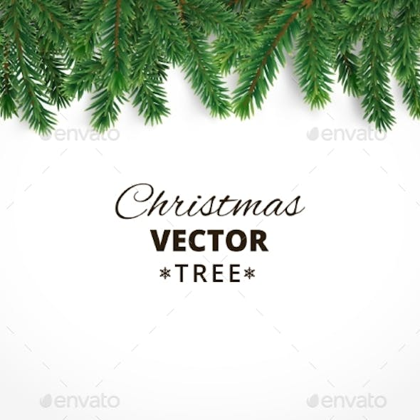 Background with Vector Christmas Tree Branches