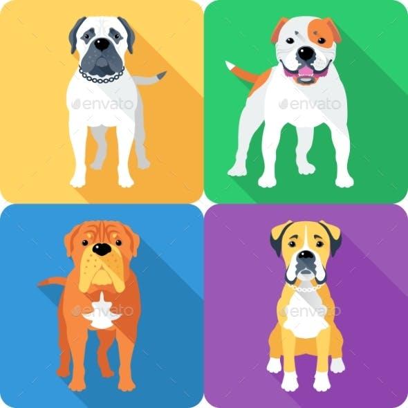 Set 8 Dog Head Icon Flat Design