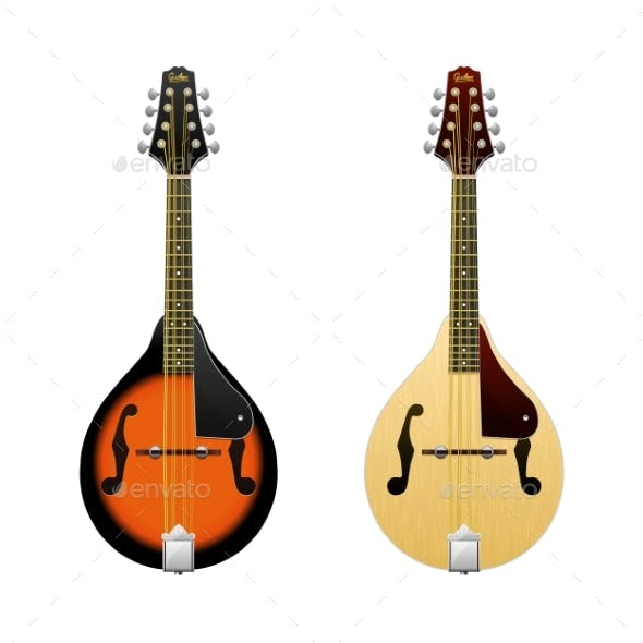 Realistic Vector Mandolin / Isolated on White