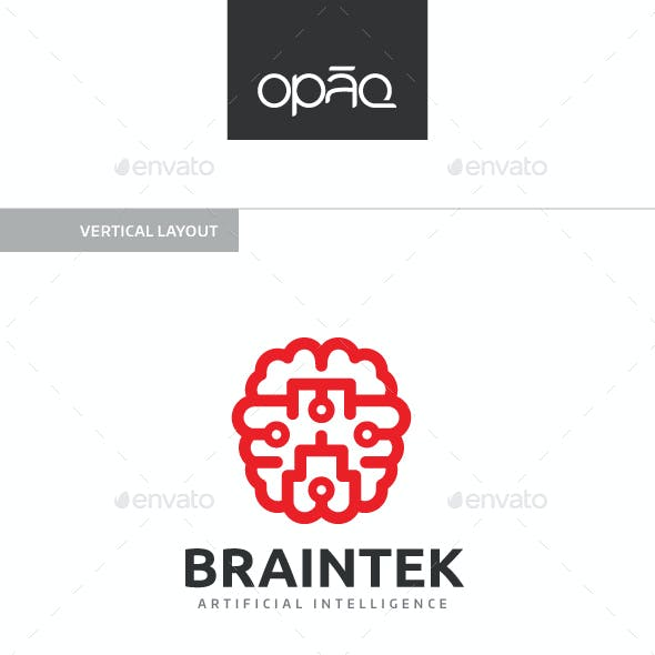 Brain Technology Logo