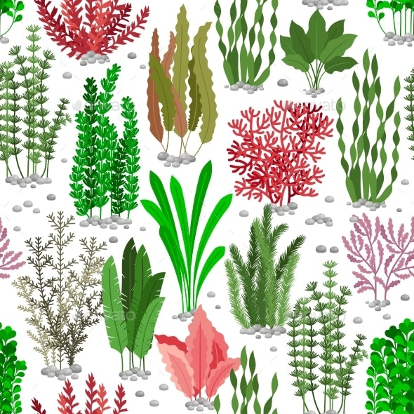Seaweed Seamless Pattern. Sea Weed Fur Vector - Backgrounds Decorative