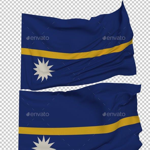 Flag of Nauru - 3 Variants