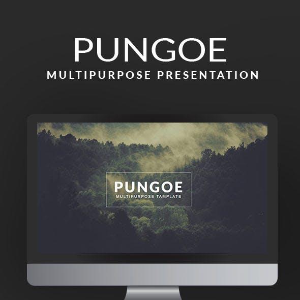 Pungoe Multipurpose Template