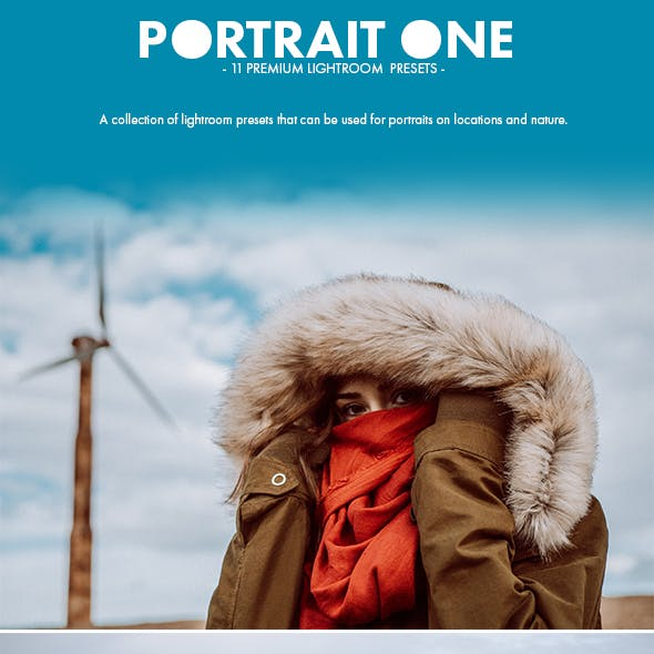 11 Premium Portrait One Lightroom Presets