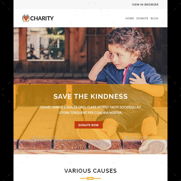 CHARITY - PSD - Multipurpose Responsive Email Template