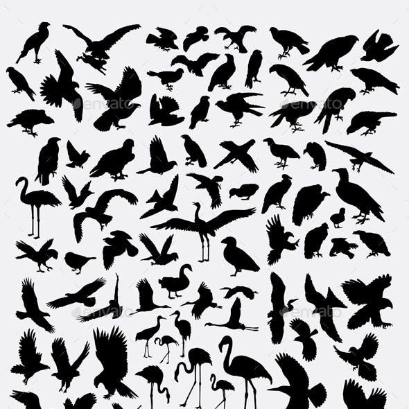 100+ Birds Silhouette
