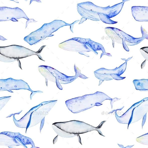 Watercolor Whales Pattern