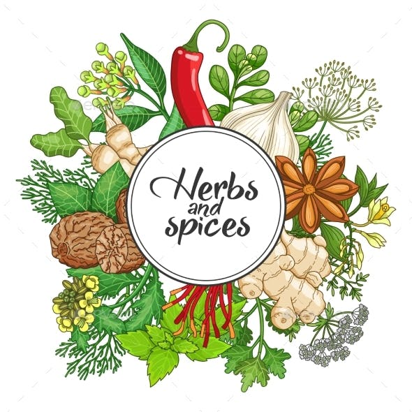 Vector Hot Round Design with Spices and Herbs