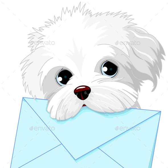 Dog Delivering Mail Envelope