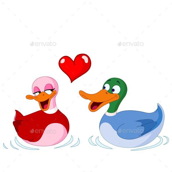 In Love Ducks