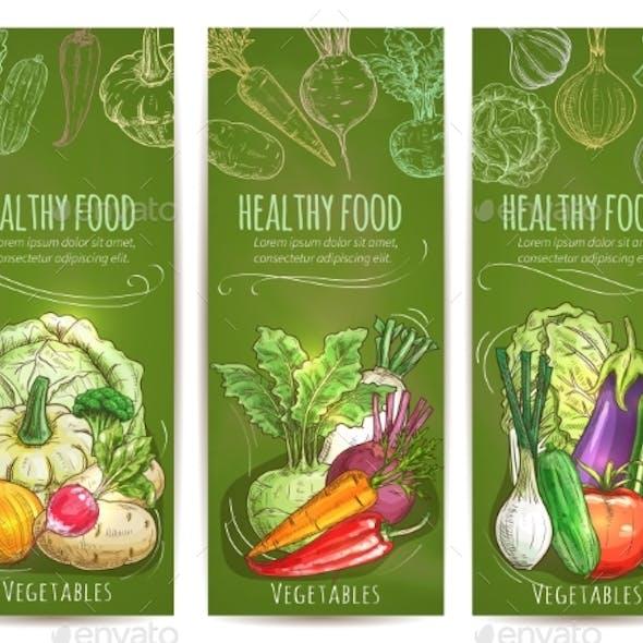 Vegetables Healthy Vegetarian Food Sketch Banners