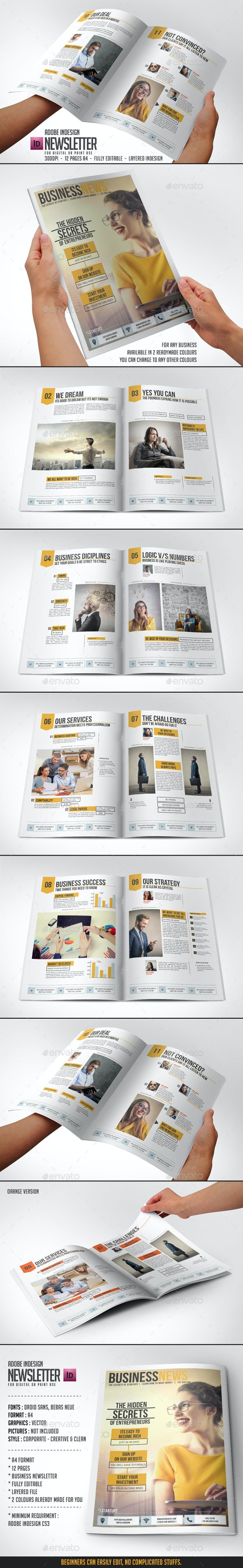 Newsletter Indesign Vol2 - Newsletters Print Templates