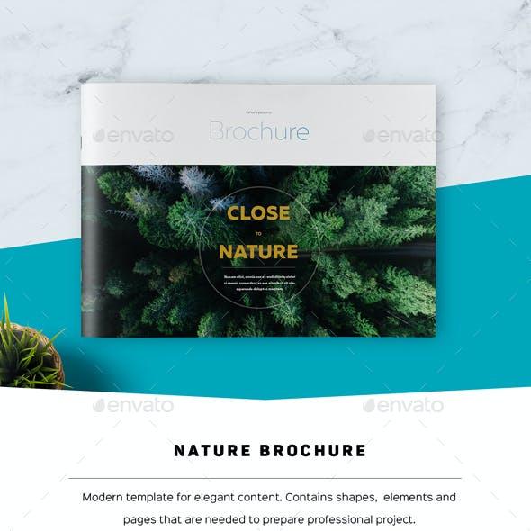 Nature Landscape Brochure