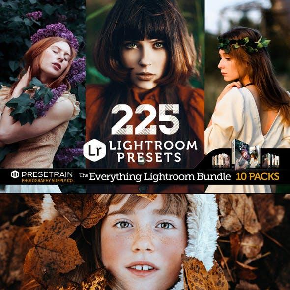 225 Pro Lightroom Presets Bundle