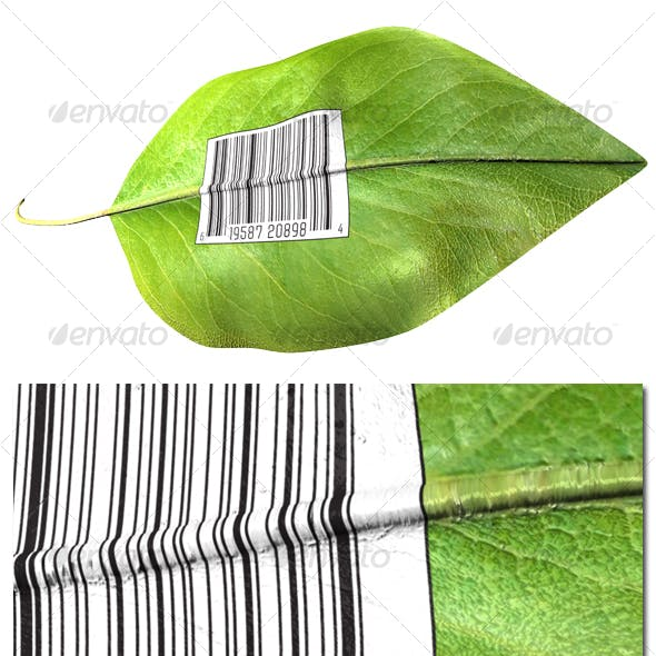 Barcode on leaf