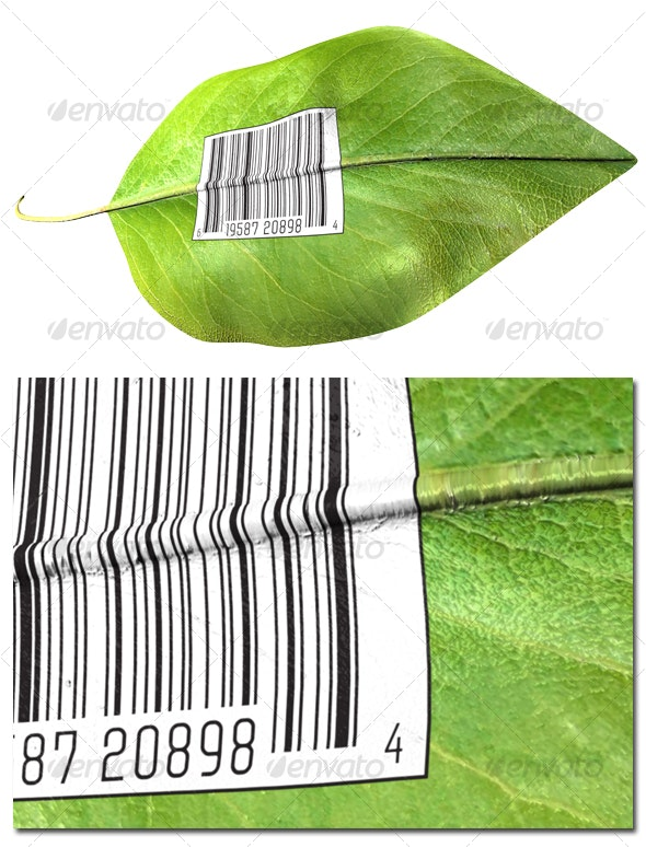 Barcode on leaf - Objects 3D Renders
