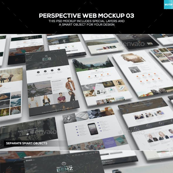 Perspective Web Mockup 03