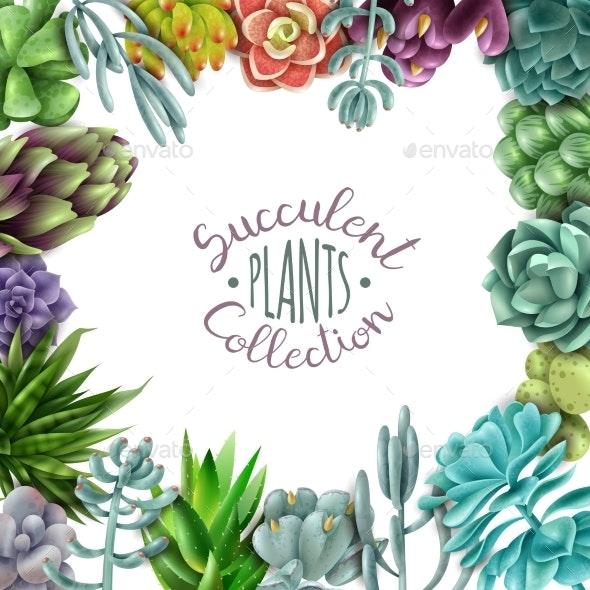 Succulent Plants Collection - Flowers & Plants Nature