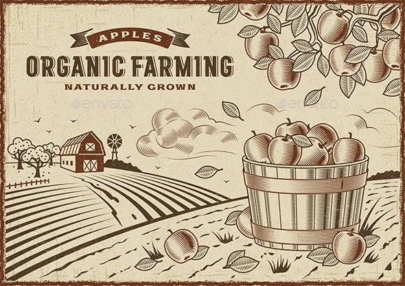 Apple Organic Farming Landscape - Landscapes Nature