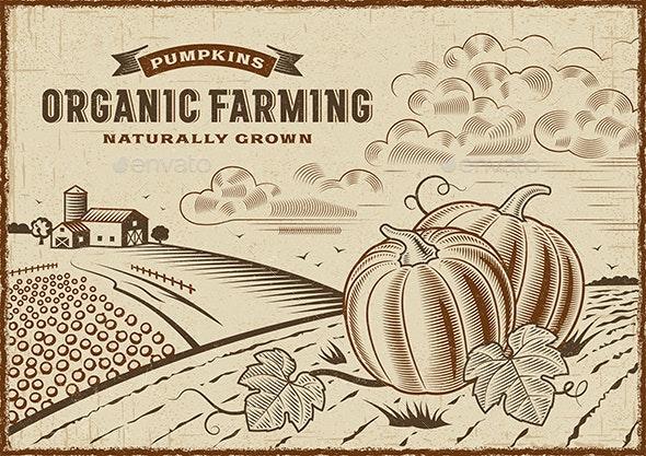 Pumpkin Organic Farming Landscape - Landscapes Nature