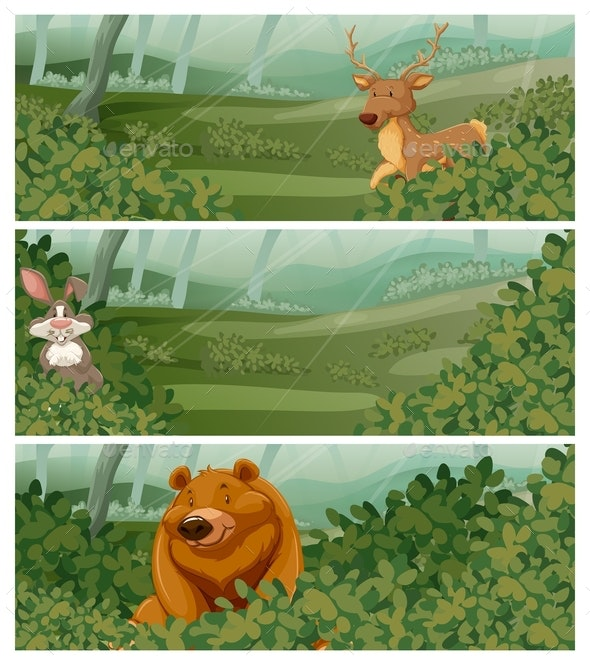 Wild Animals in the Forest at Day Time - Animals Characters