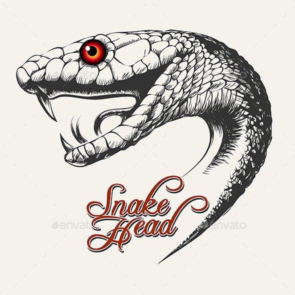 Snake Head Illustration