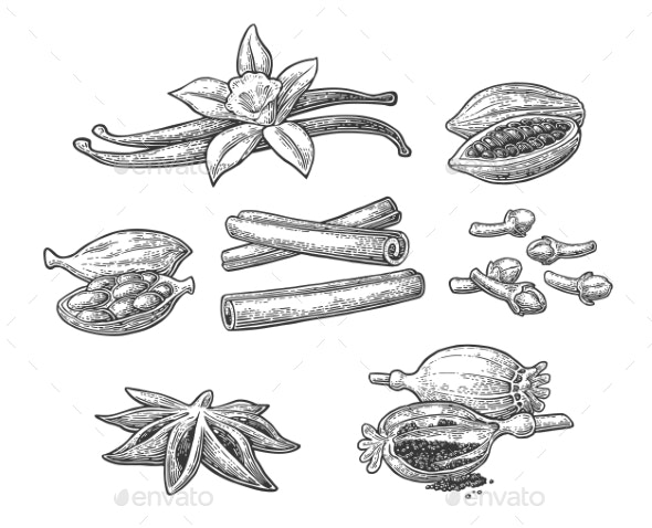 Set of Spices - Food Objects