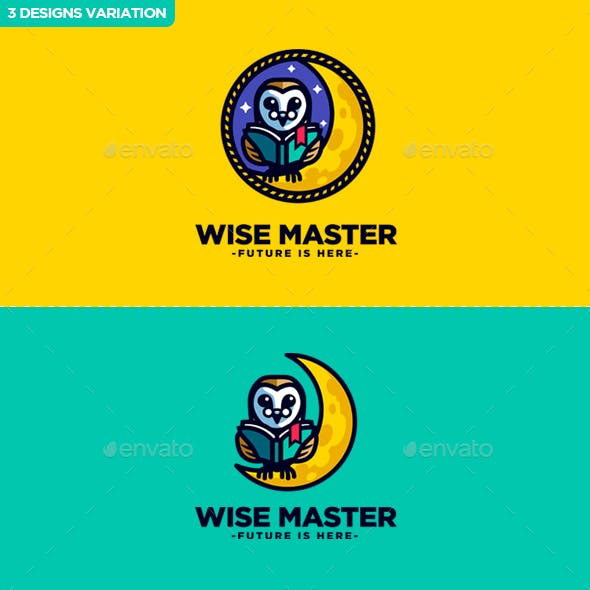 Wise Master - Owl Character Mascot Logo