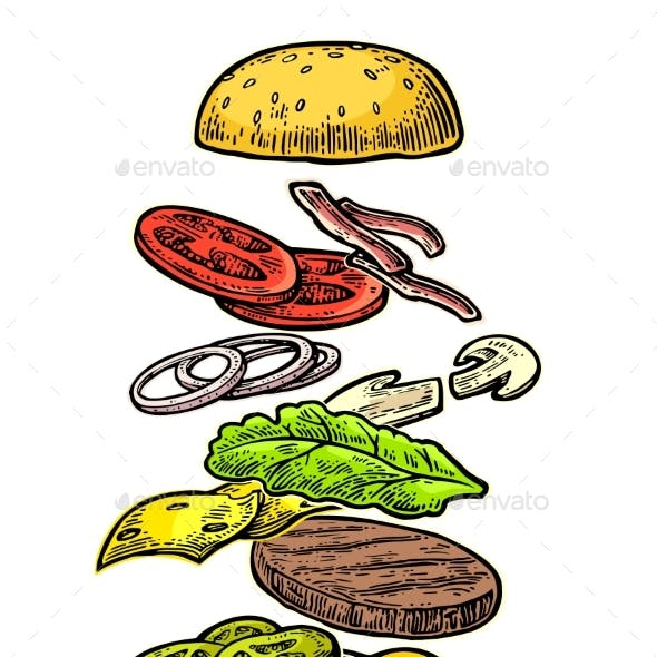 Burger Ingredients on White Background