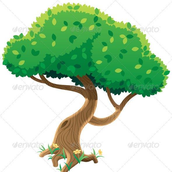 Tree on White