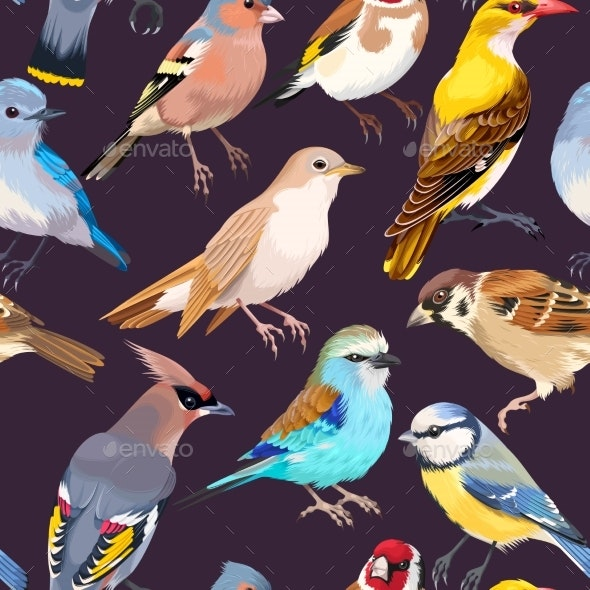 Seamless Patterns with Birds - Animals Characters