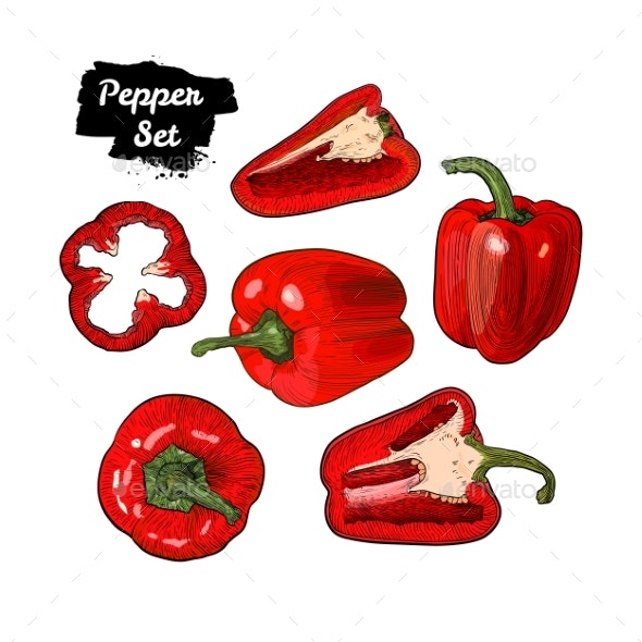 Hand Drawn Sketch Style Bell Pepper Set Isolated - Food Objects