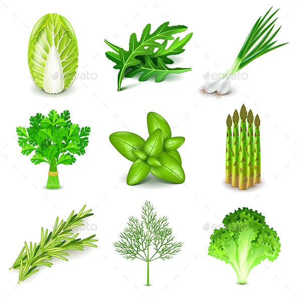 Green Vegetables and Spices Icons Vector Set - Food Objects