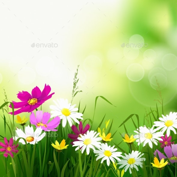 Hello Summer Background - Flowers & Plants Nature