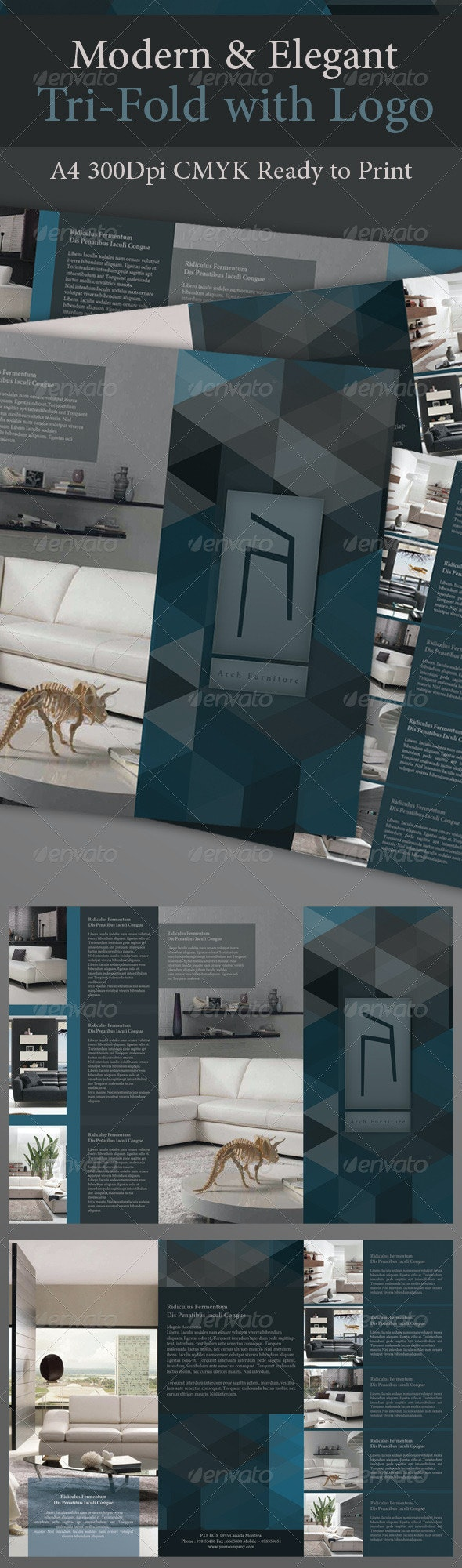 Modern & Elegant Tri-Fold with Logo - Corporate Brochures