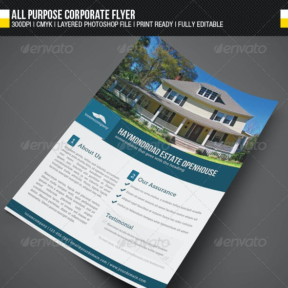 All Purpose Corporate Flyer