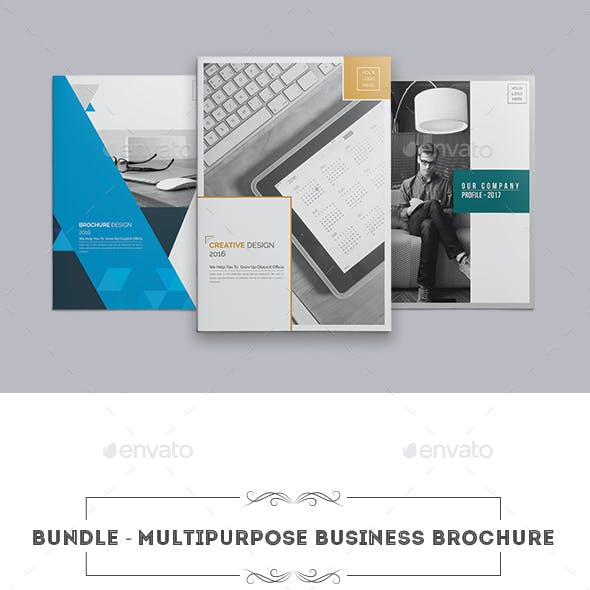 Bundle ।  Multipurpose Business Brochure