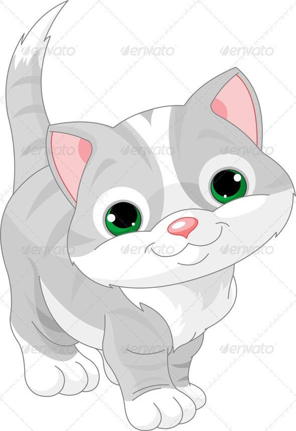 Cute gray kitten - Animals Characters