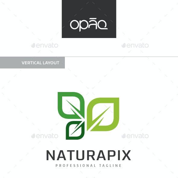 Pixel Nature Leaf Logo