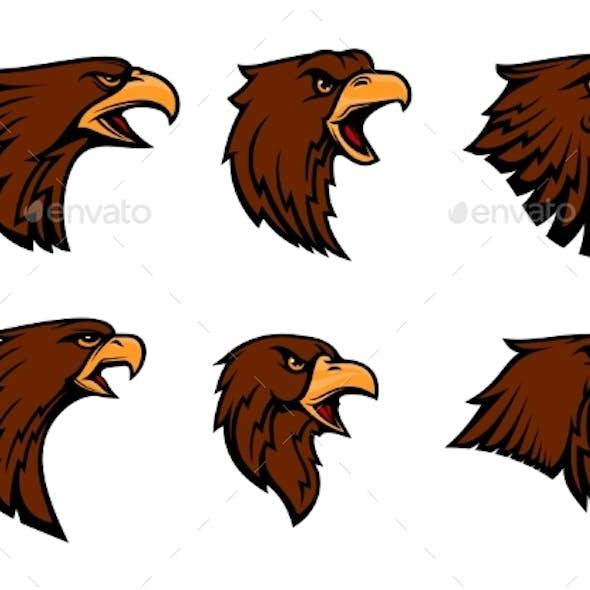 Hawk Heraldic Mascot Icons Set