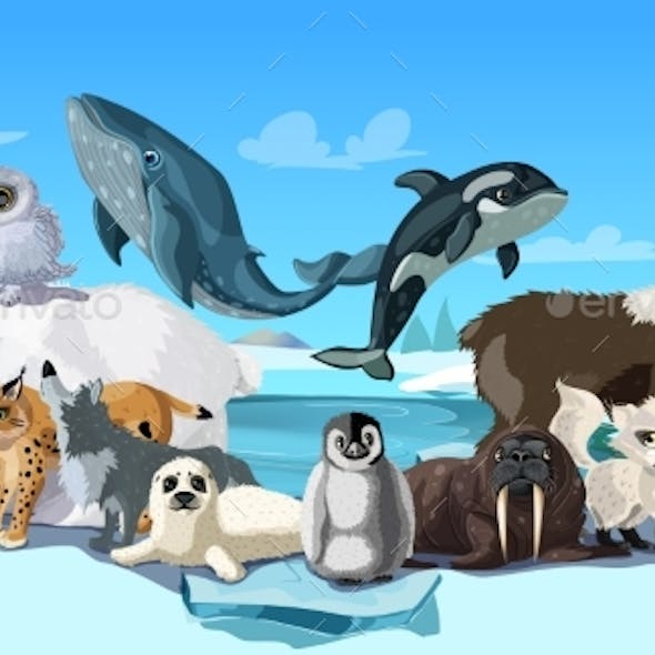 Arctic Animals Cartoon Template