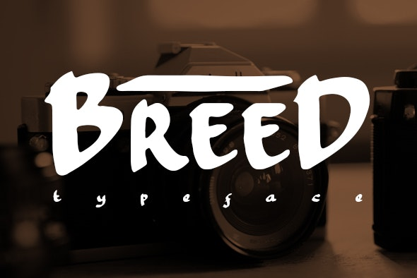 Breed - Handwriting Fonts