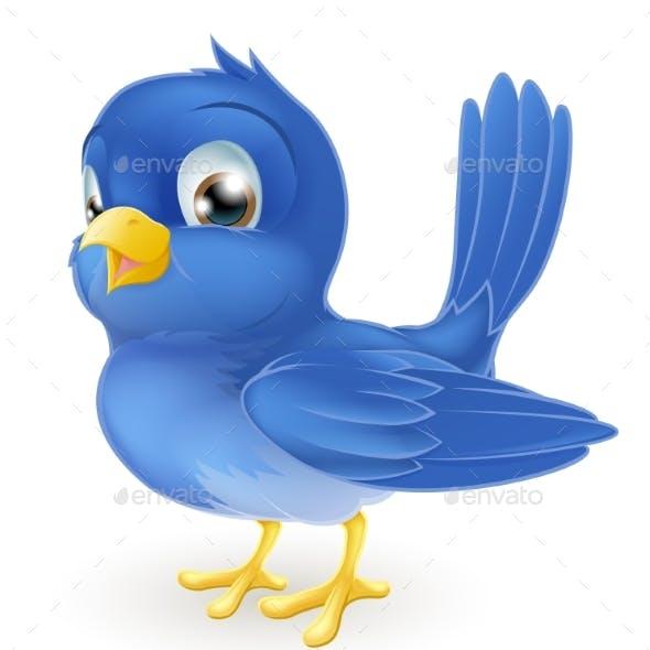 Cartoon Bluebird